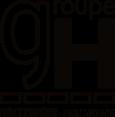 Logo groupe holtzinger