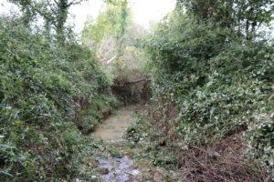 abords de cours d'eau débroussaillés