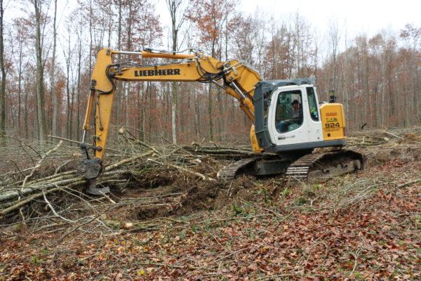 élagueuse Jarraff entretient une lisière de forêt sous lignes électriques