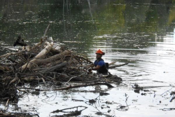 nettoyage d'embâcle sur cour d'eau