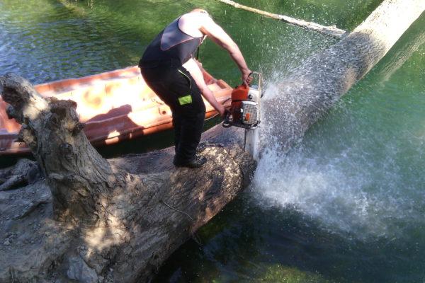 tronçonnage de tronc encombrant un cour d'eau