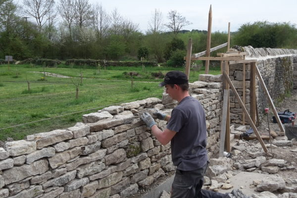 reconstruction du mur de pierres sèches