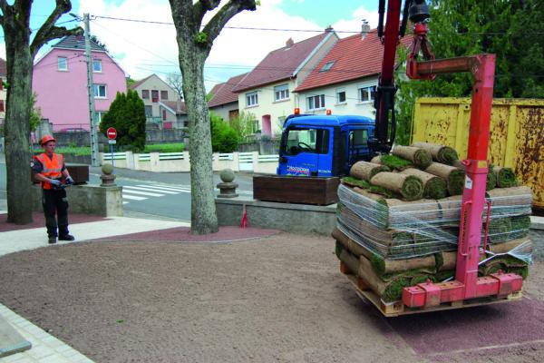 livraison des rouleaux de gazon de placage