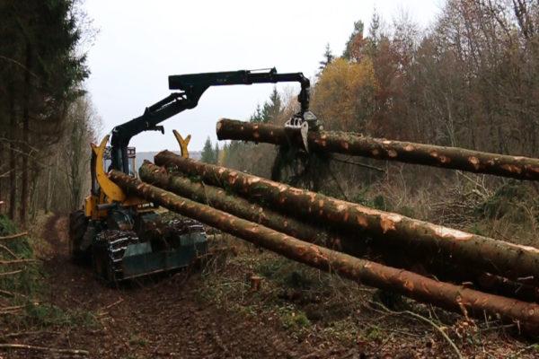 chargement au porteur forestier et débusqueur