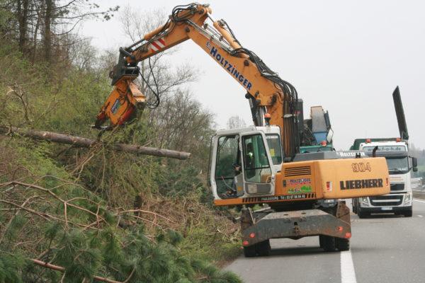 abattage d'arbre par pelle mécanique et sécateur abords d'autoroutes